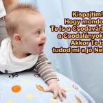 csodavar_16_febr_kis-279