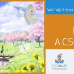 csv_fb_2017_marc